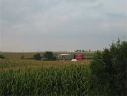 Field of movie