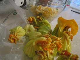 Unstuffed squash blossoms