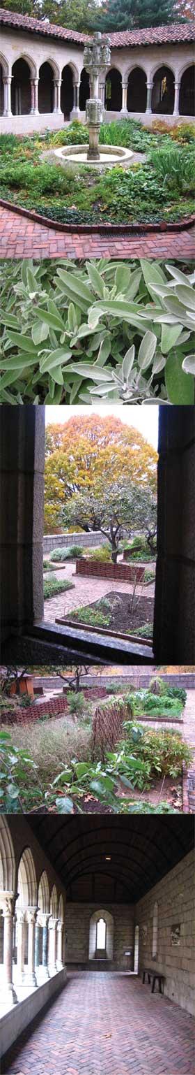 Cloisters gardens