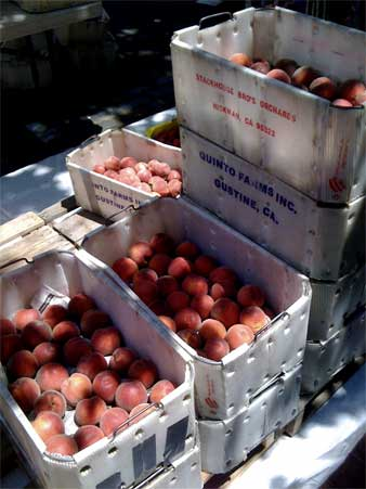 Peaches, Old Oakland Farmer\'s Market